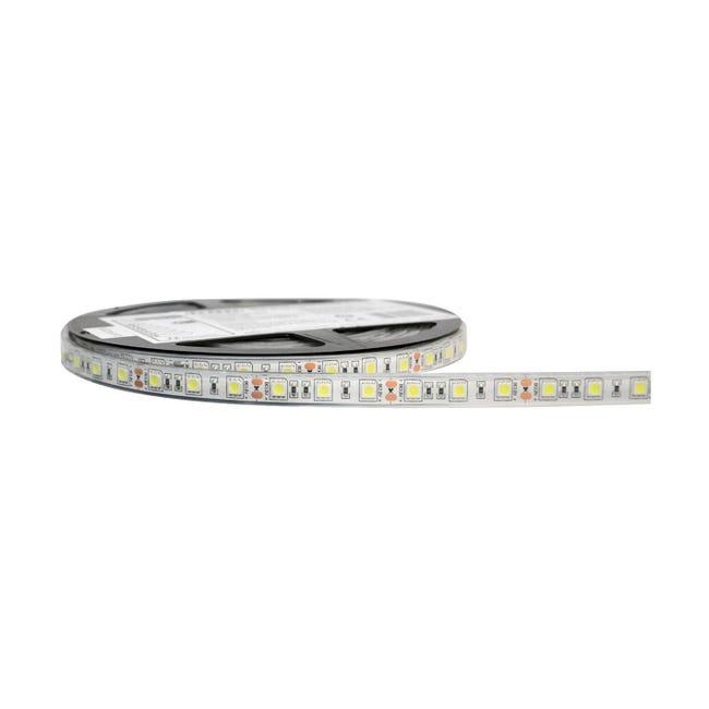 Striscia led Striscia LED Bianco 5m luce bianco freddo 3400LM IP68 - 1