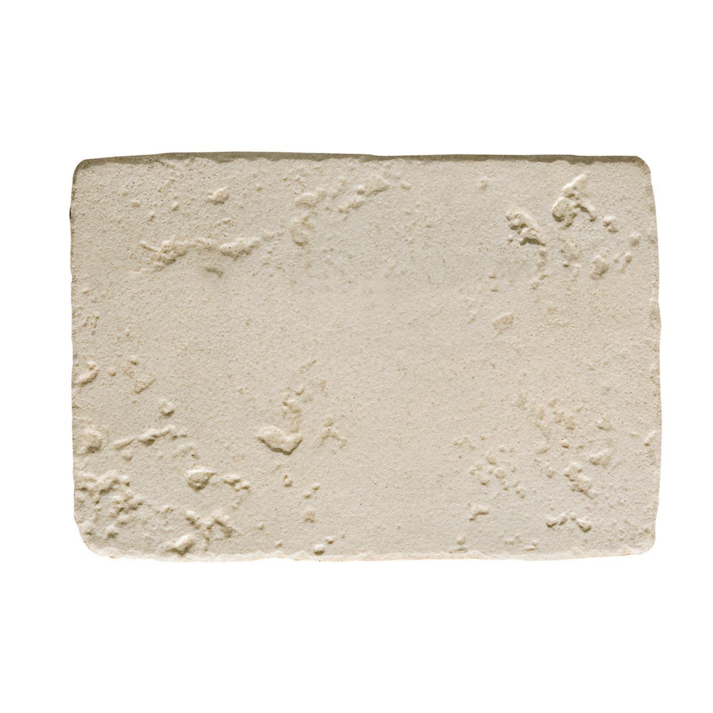 Piastrella Abbazie Cluny 33 x 50 cm sp. 9.5 mm PEI 4/5 bianco - 2