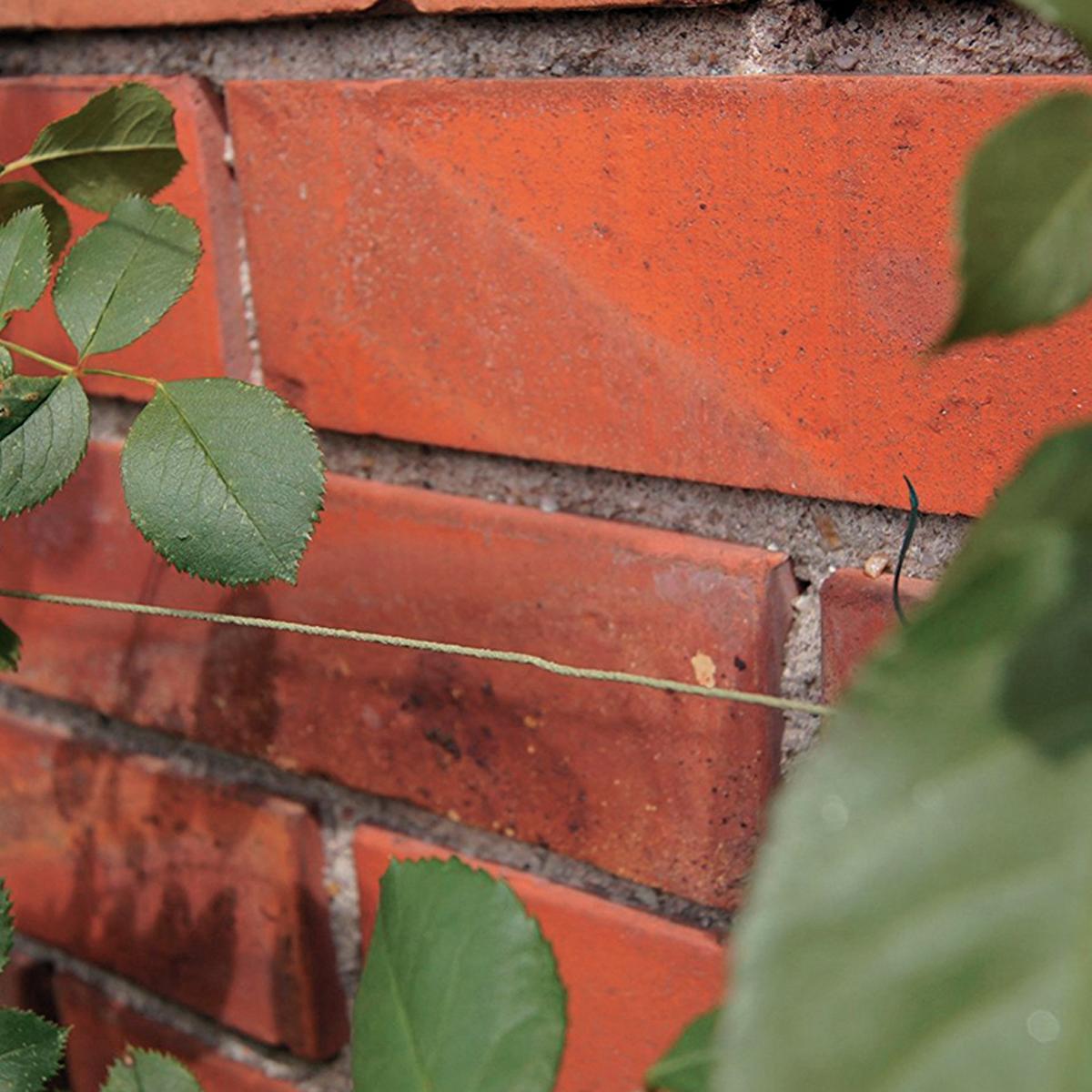 Filo in ferro Ø 1 mm x L 50 m - 2