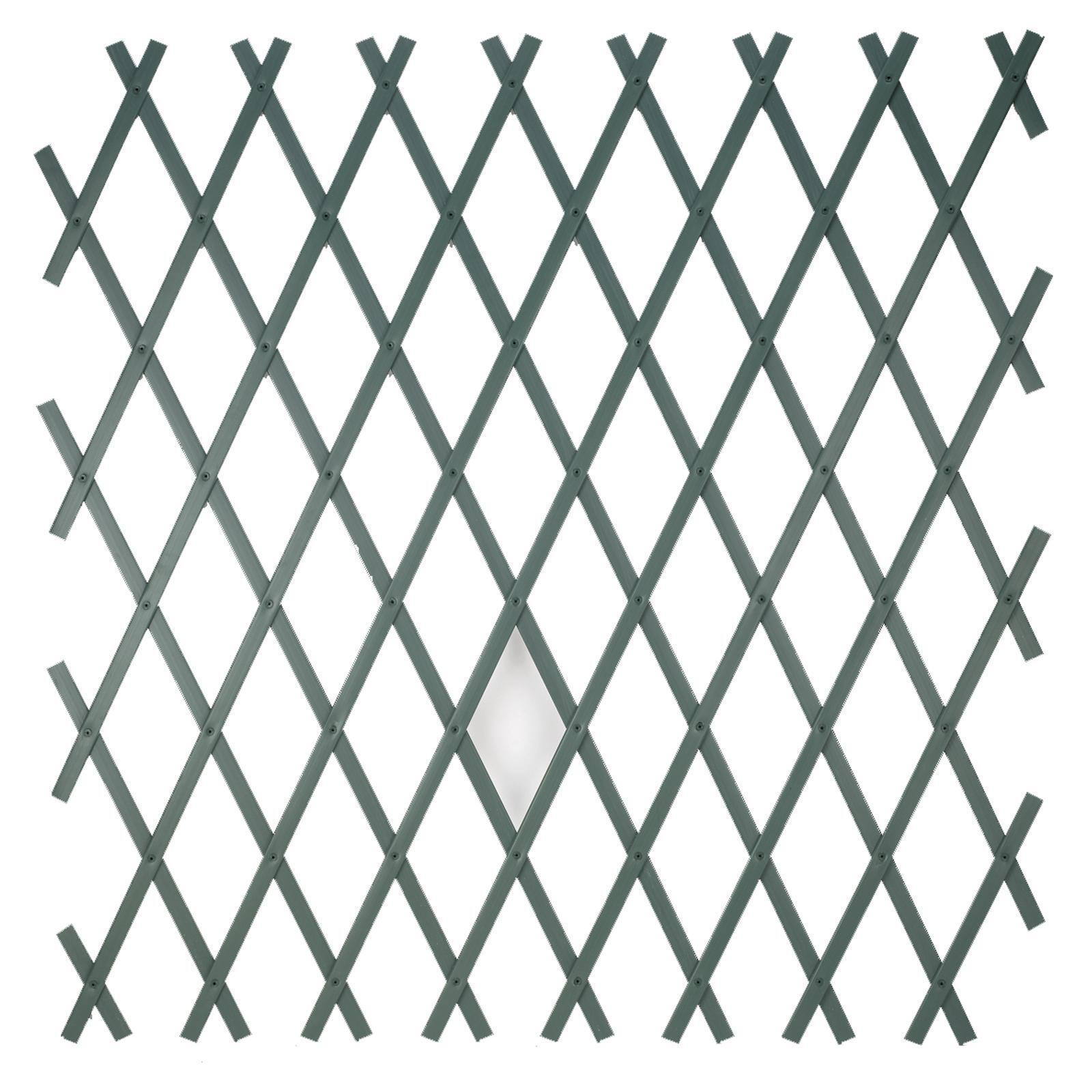 Traliccio estensibile Treplas in pvc L 100 x H 200 cm , spessore 7 mm - 1