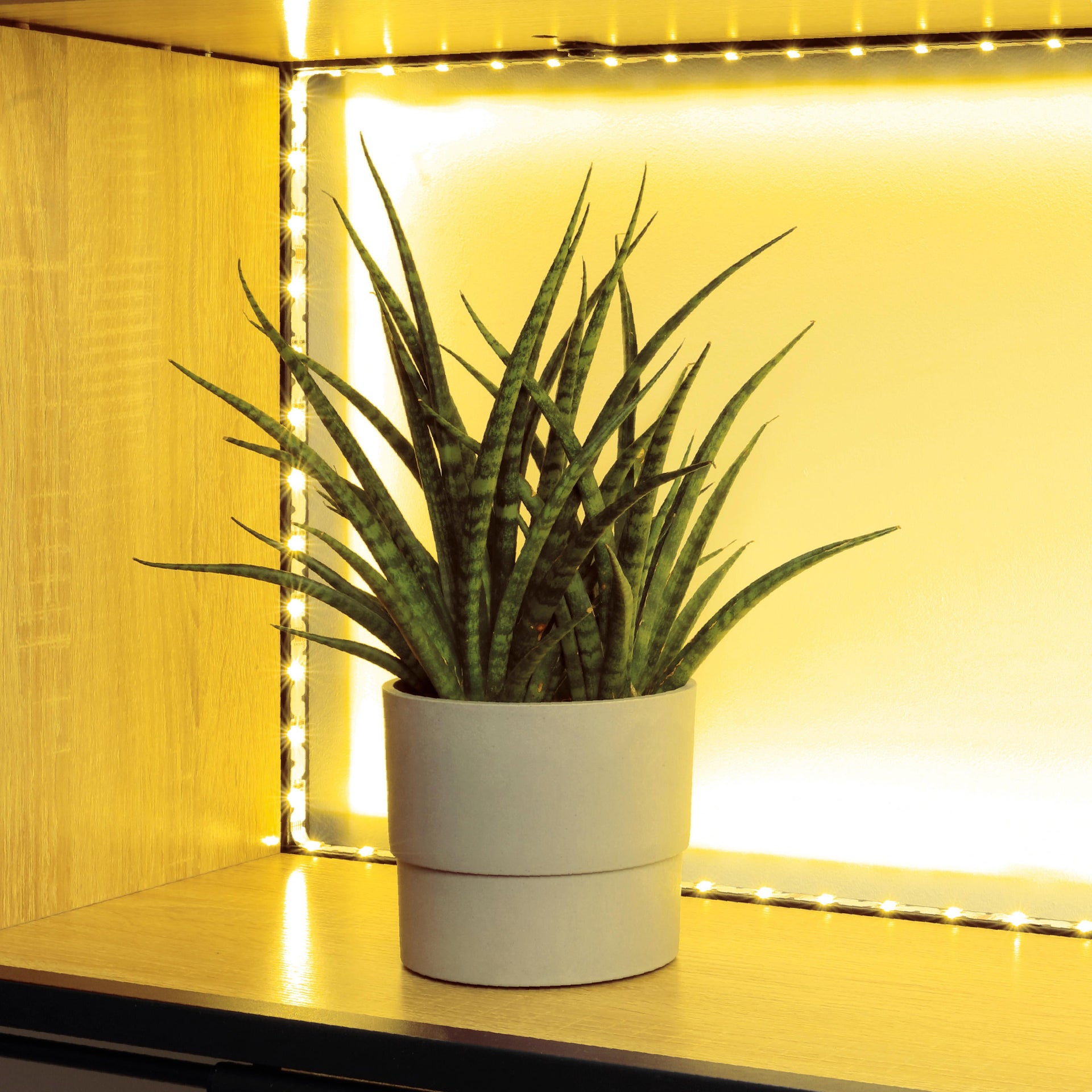 Striscia led Movaled 5m luce colore cangiante<multisep/>bianco 240LM IP20 INSPIRE - 11