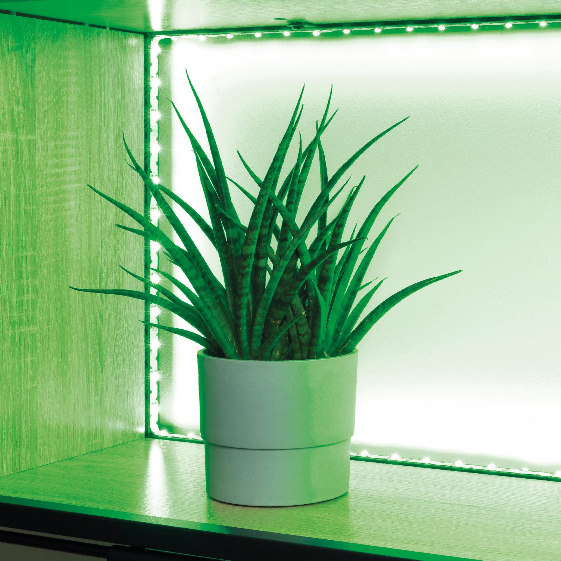 Striscia led Movaled 5m luce colore cangiante<multisep/>bianco 240LM IP20 INSPIRE - 7