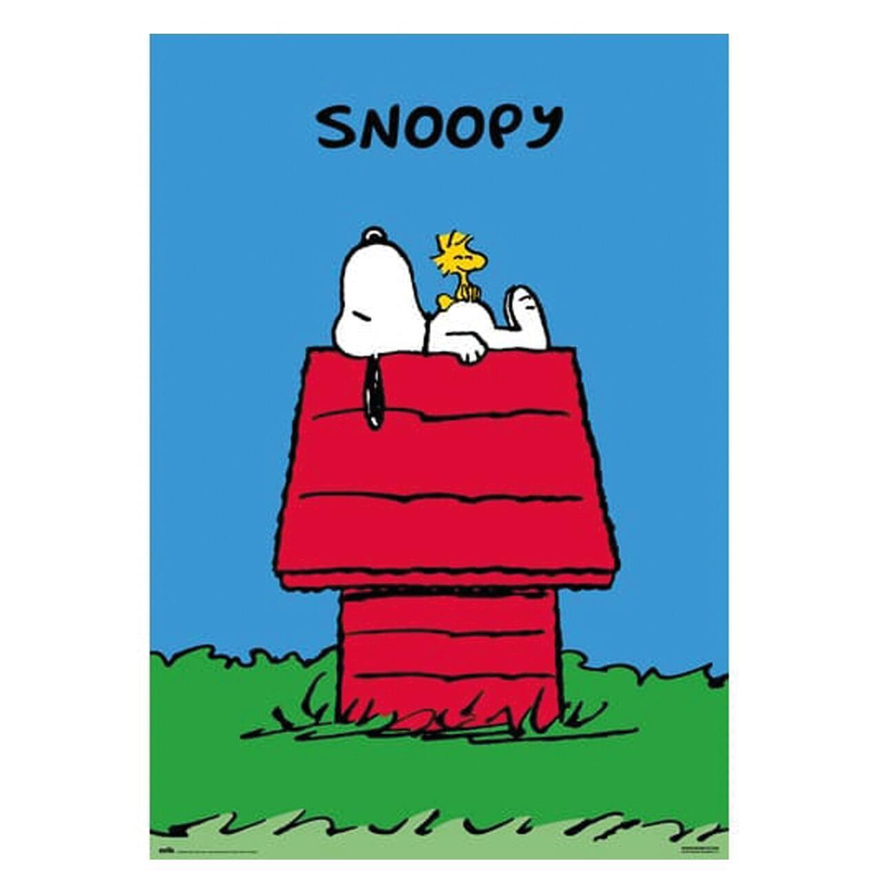 Poster Snoopy 61x91.5 cm