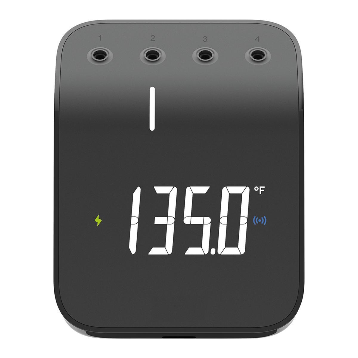Termometro WEBER - 3