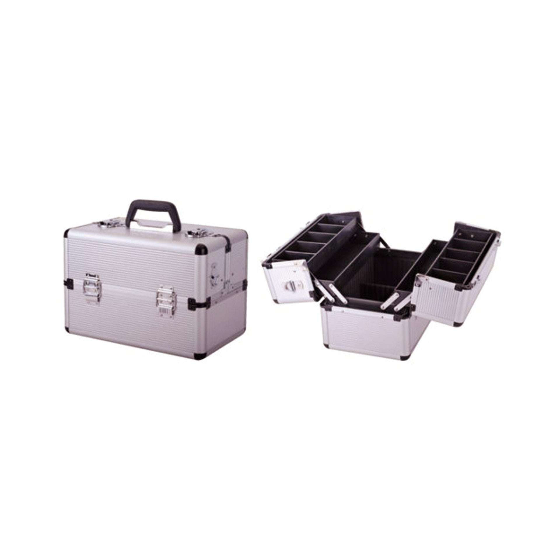 Cassetta attrezzi DEXTER L 22.5 x H 36.5 cm, profondità 250 mm - 1