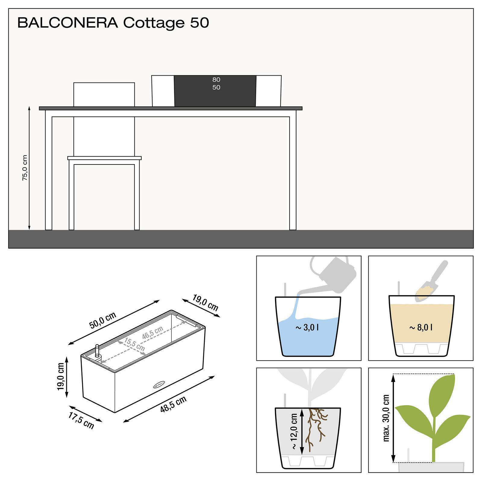 Cassetta portafiori Cottage in plastica colore marrone H 19 x L 50 - 5