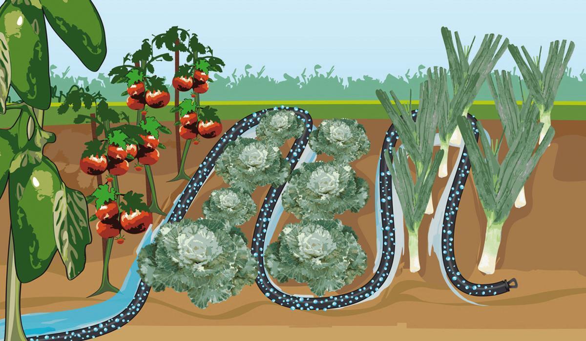 Kit di irrigazione goccia a goccia 25 punti di irrigazione GEOLIA GEO4090 - 4