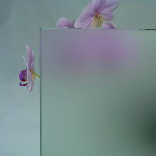 Vetro trasparente L 100 x H 160.5 cm, Sp 4 mm - 1